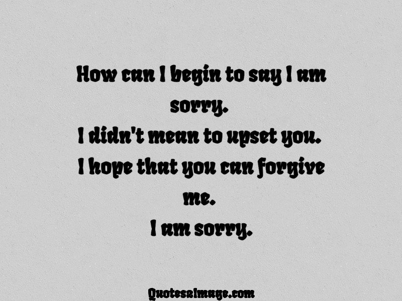 Sorry Quote Image 1652