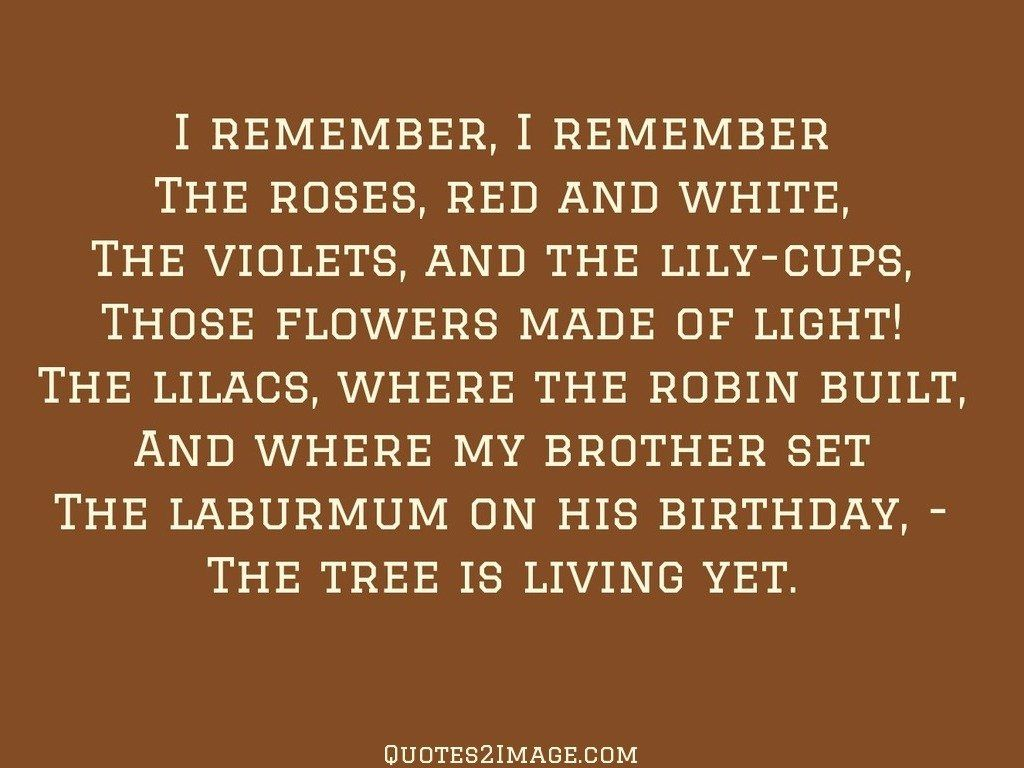 birthday-quote-tree-living-yet