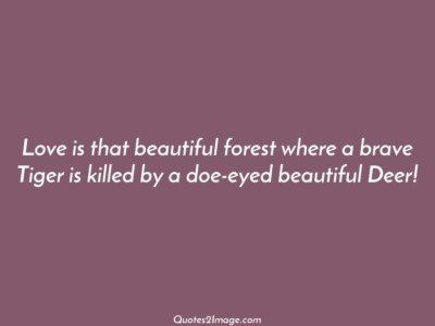 flirtquotelovebeautifulforest
