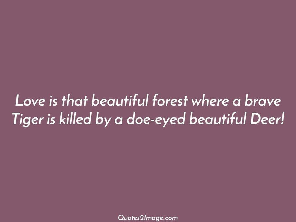 Love is that beautiful forest