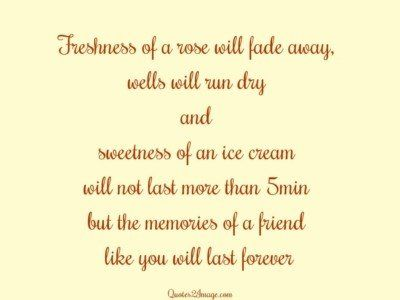 friendship-quote-freshness-rose-fade