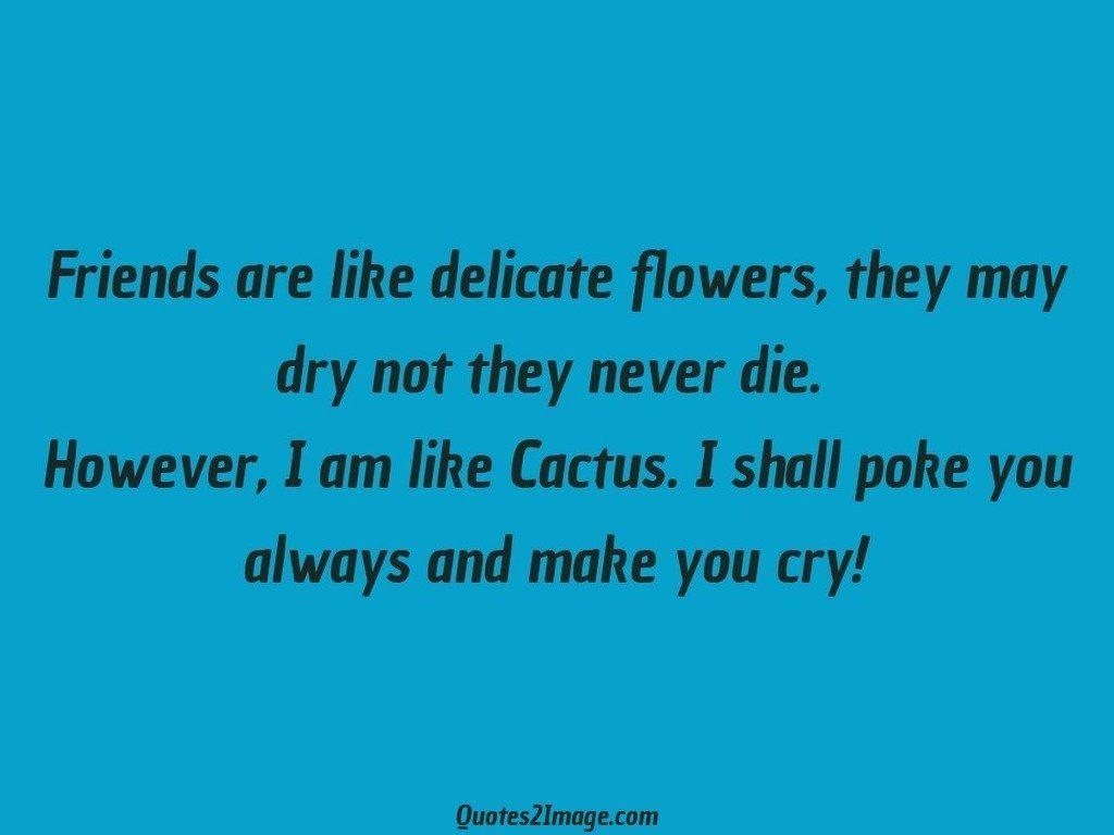 friendshipquotefriendsdelicateflowers