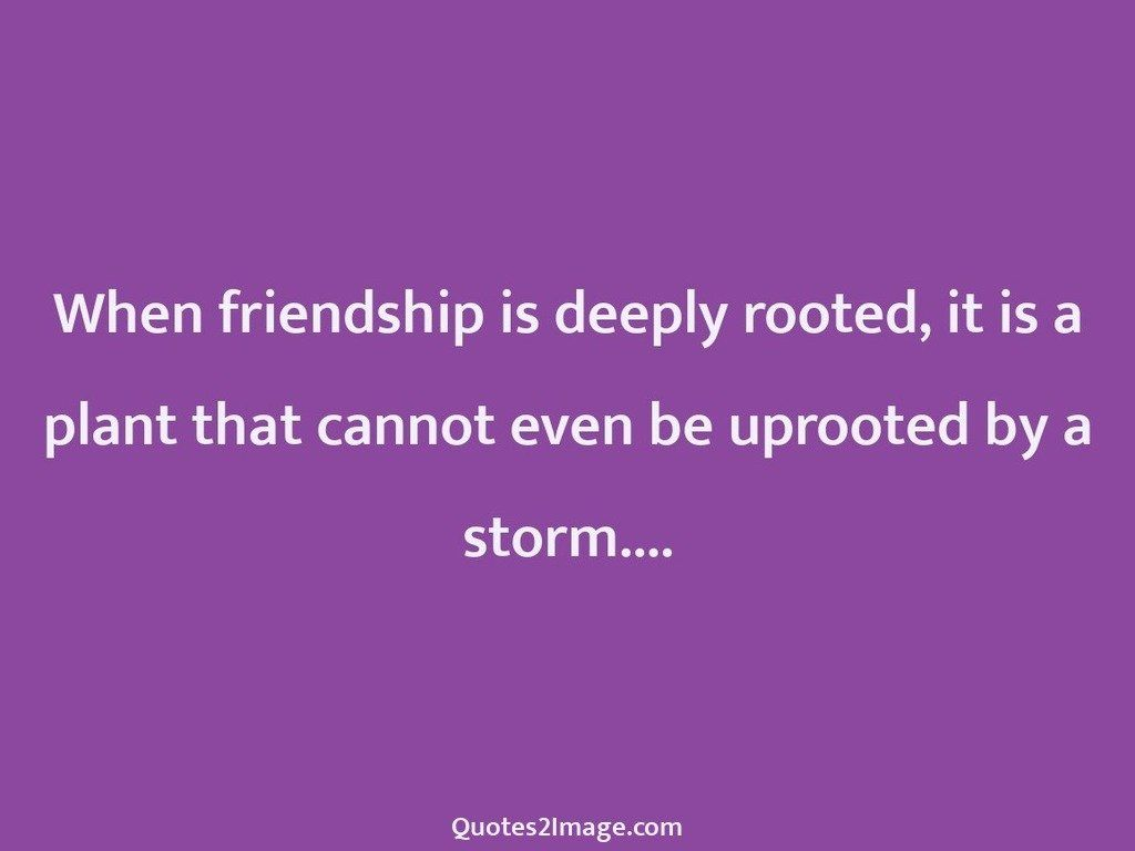 When friendship is deeply rooted