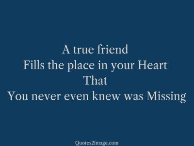 friendship-quote-knew-missing