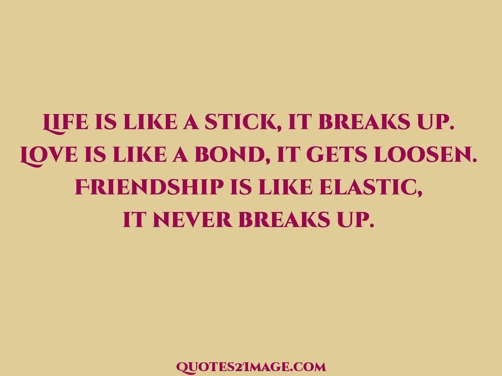Life is like a stick