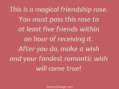 friendshipquotemagicalfriendshiprose