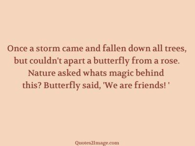 friendship-quote-once-storm-came