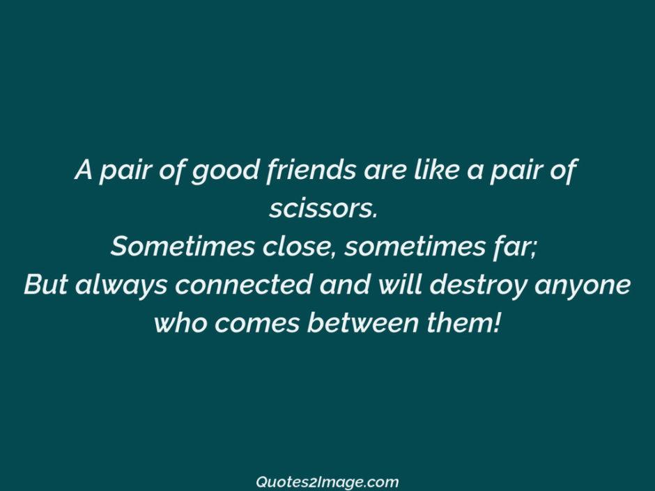 A pair of good friends