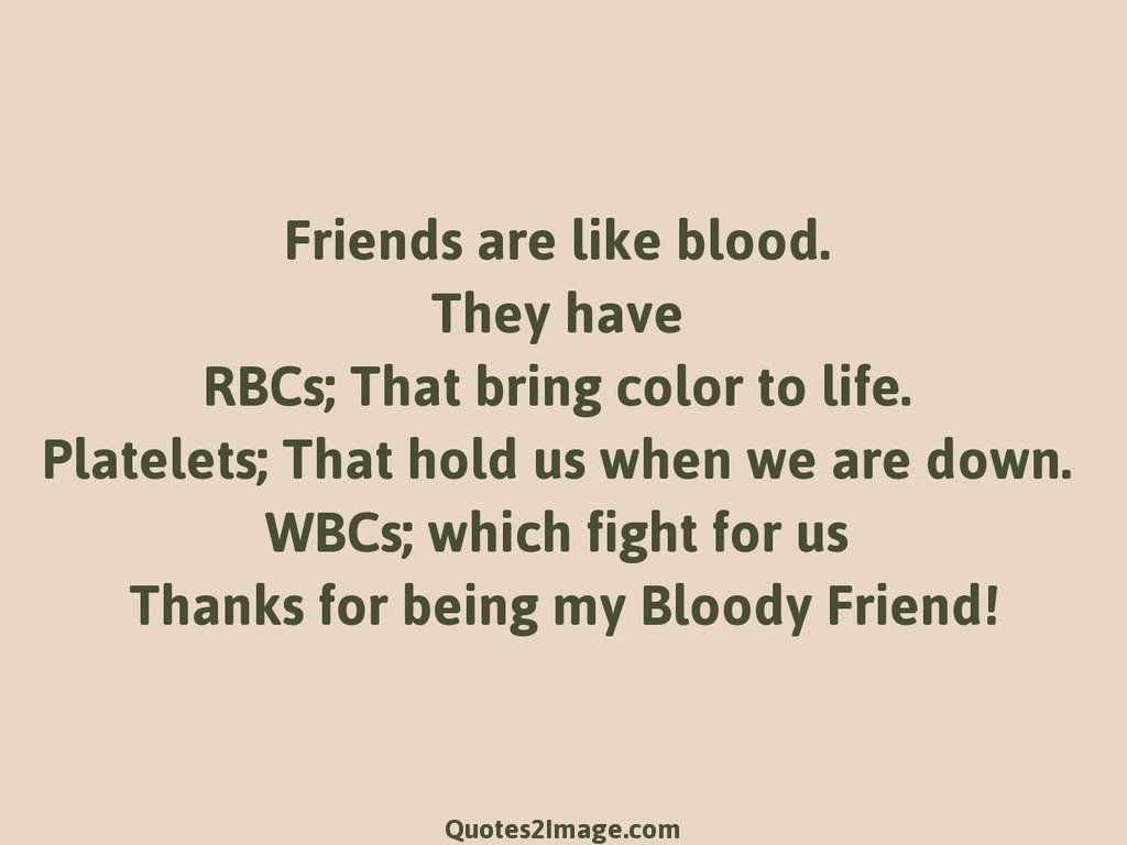 Quotes About Friendship Fights Entrancing Thanks For Being My Bloody Friend  Friendship  Quotes 2 Image