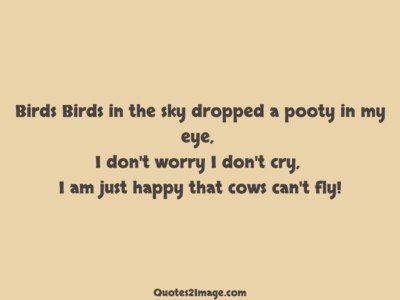 funny-quote-birds-sky-dropped