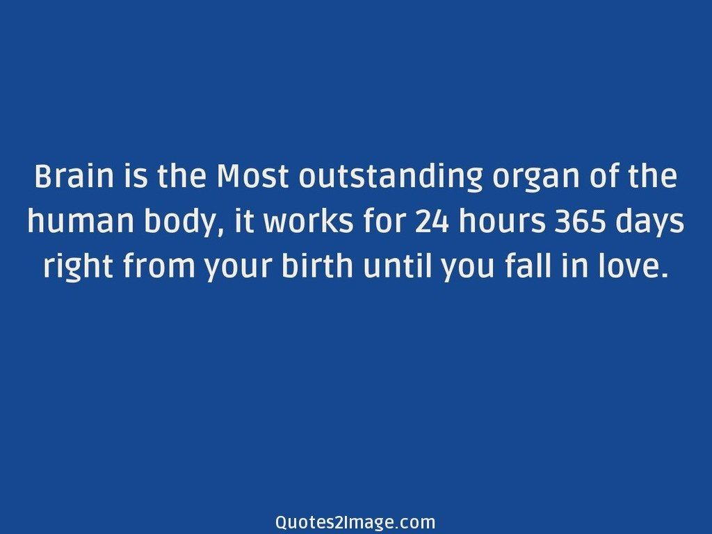 Brain is the Most outstanding organ