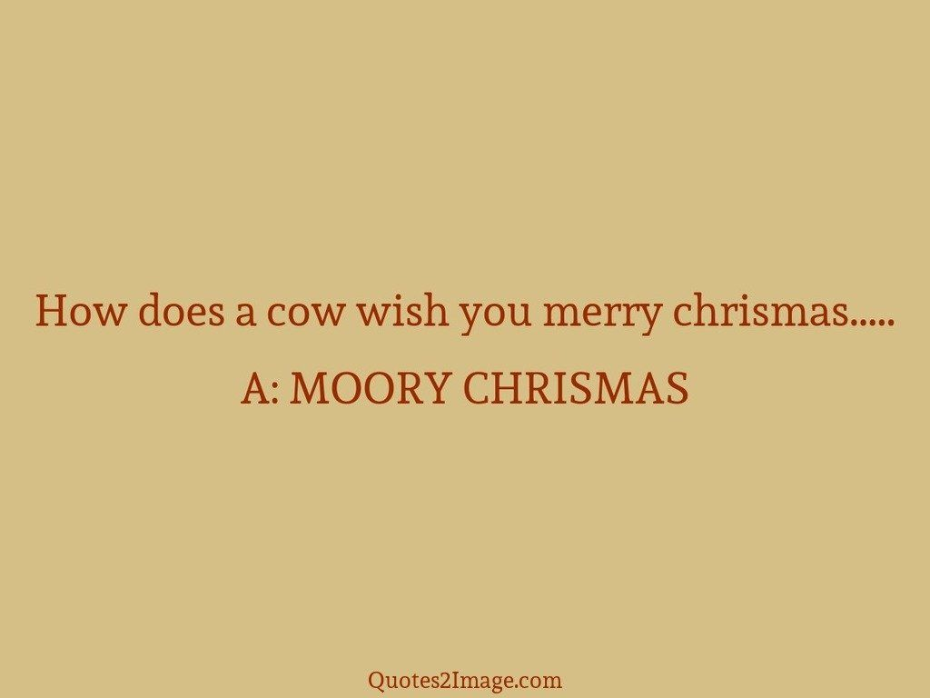 How does a cow wish you merry