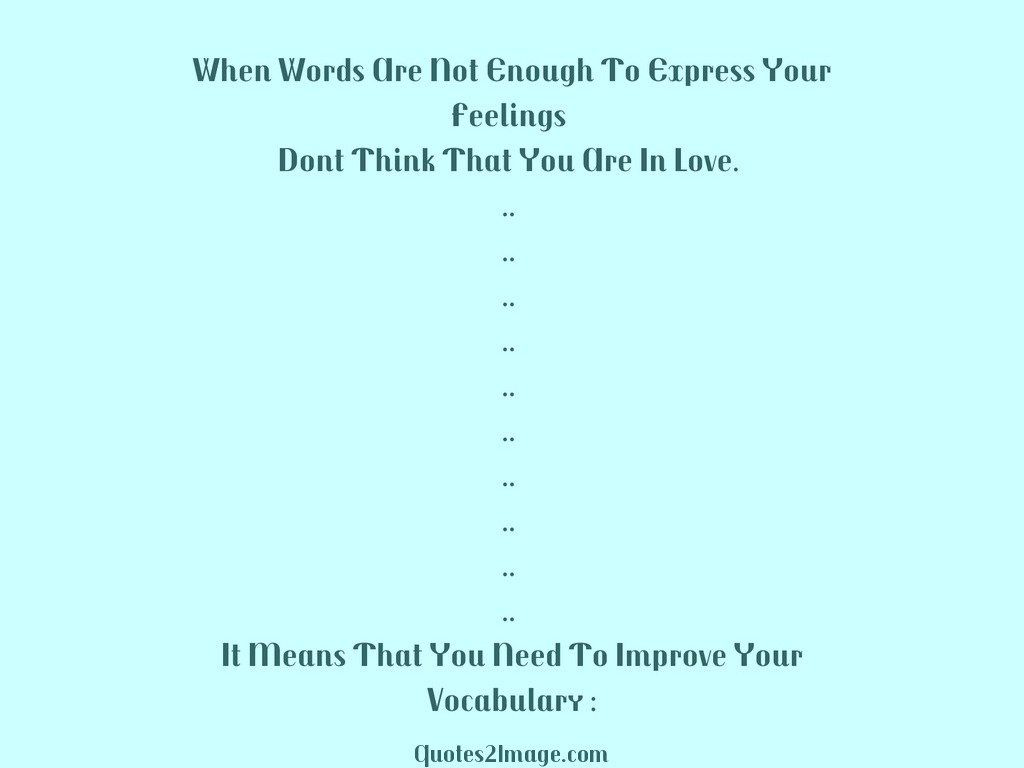 funny-quote-words-enough-express