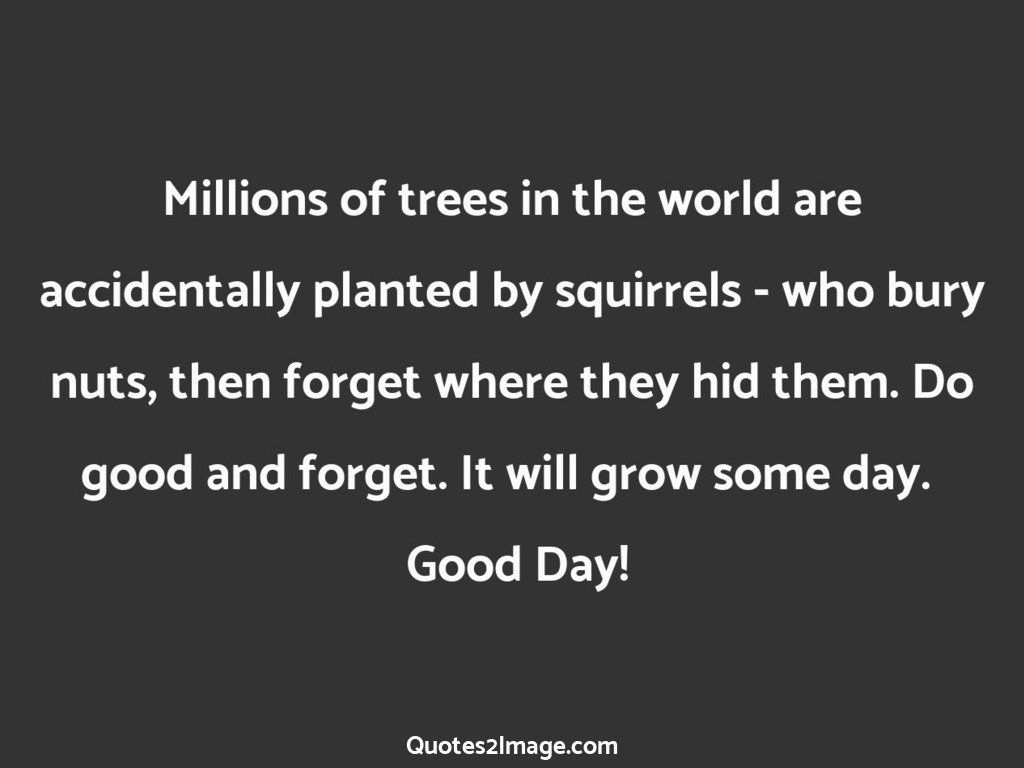 Millions of trees in the world