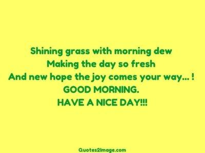 good-morning-quote-shining-grass-morning