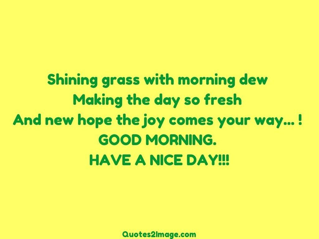 Shining Grass With Morning Good Morning Quotes 2 Image