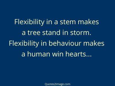 inspirationalquoteflexibilitystemmakes