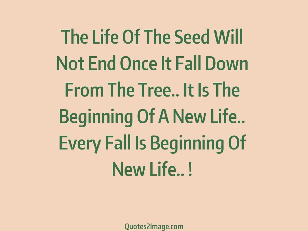 The Life Of The Seed