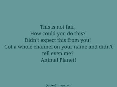 insult-quote-animal-planet