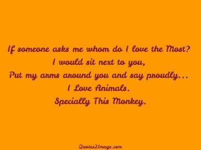 insult-quote-specially-monkey