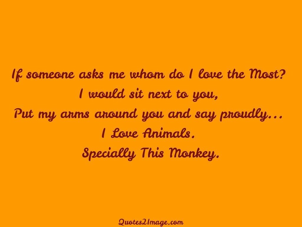 Specially This Monkey