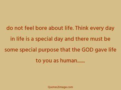 lifequotefeelborelife