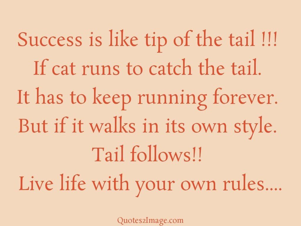 Success is like tip of the tail