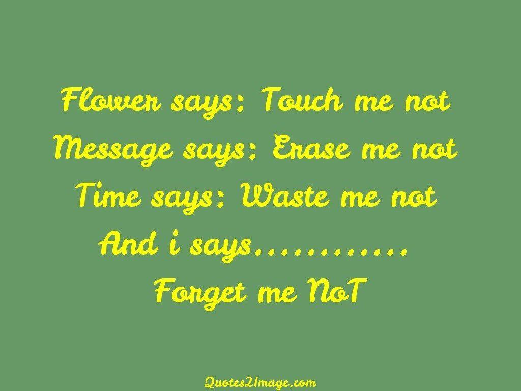 Flower says