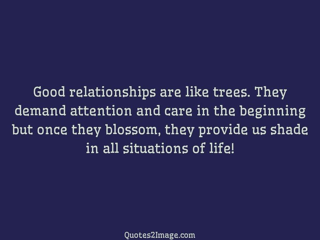 Quote About Relationships Good Relationships Are Like Trees  Relationship  Quotes 2 Image