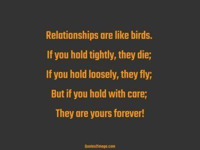 relationshipquoterelationshipsbirds