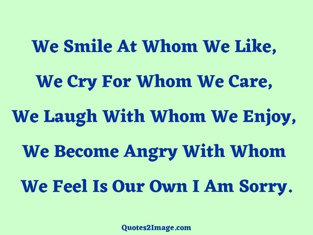 Feel Is Our Own I Am Sorry