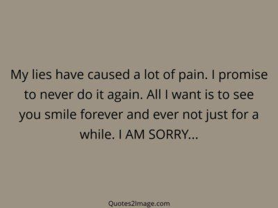 sorry-quote-lies-caused-lot