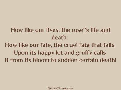 wise-quote-bloom-sudden-certain