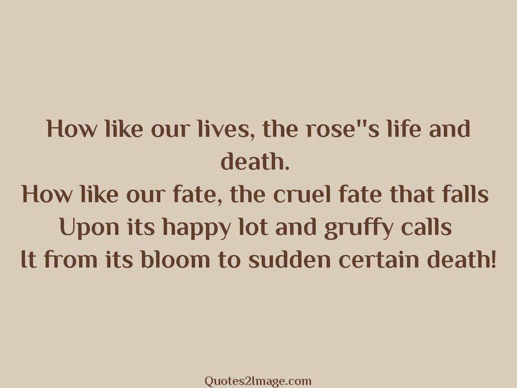 Bloom to sudden certain death