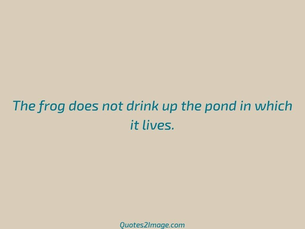 The frog does not drink up the pond